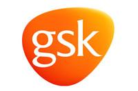 1GSK E F.jpg